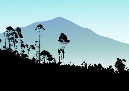 leque: �rvore tropical com fundo de montanha