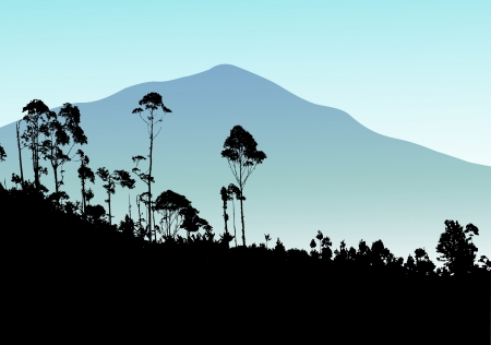Tropical tree with mountain background  Vector