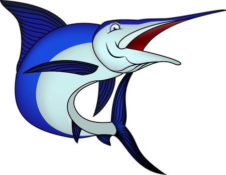 pez vela: El marlín azul aislado en un fondo blanco