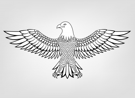 eagle flying: Eagle mascot  Illustration