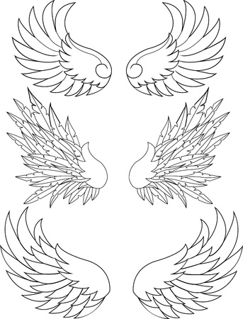 Wings collection Illustration