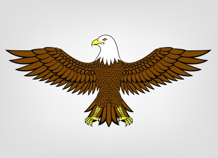 eagle head: Eagle mascot  Illustration