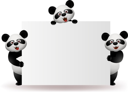 isolated on white: Three pandas with blank sign