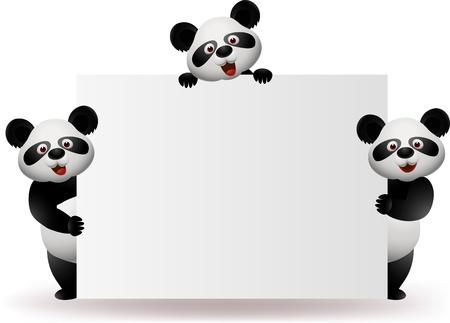 giant panda: Three pandas with blank sign