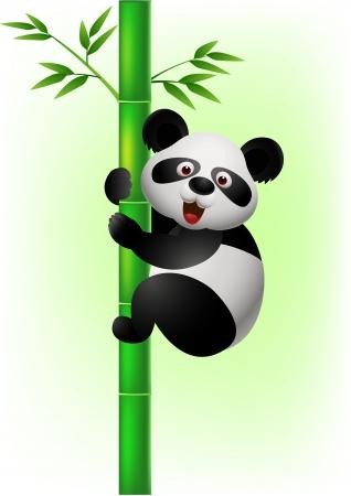 panda bear: Panda climbing tree