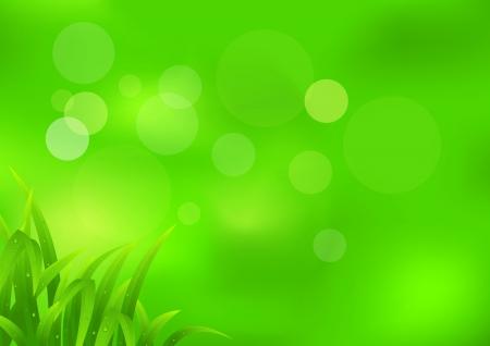 ochtend dauw: Natuur achtergrond Stock Illustratie