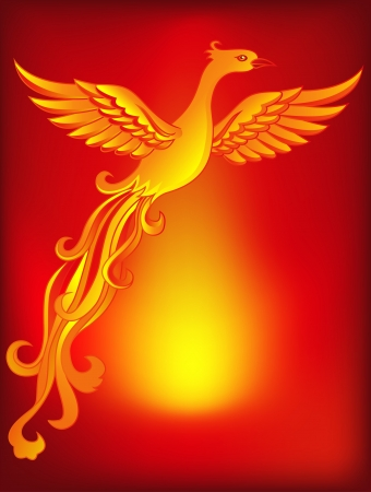 mythical phoenix bird: Phoenix bird  Illustration
