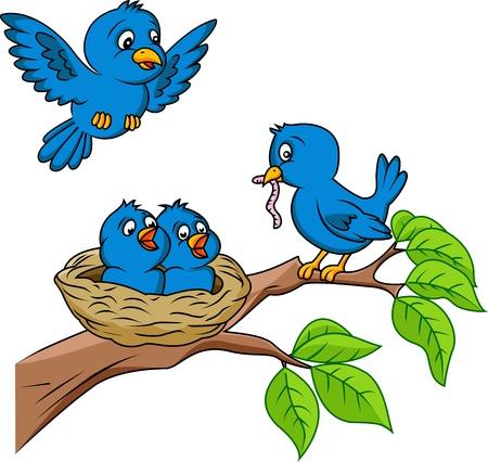 ver de terre cartoon: Famille Bird