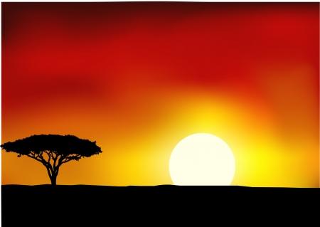 iluminado a contraluz: África del paisaje de fondo Vectores