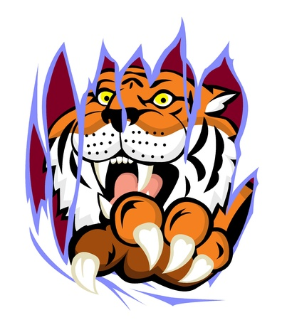 Tiger with claw tearing the background  Vector