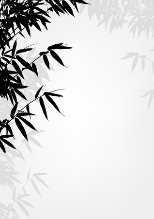 lucky plant: Bamboo tree silhouette background