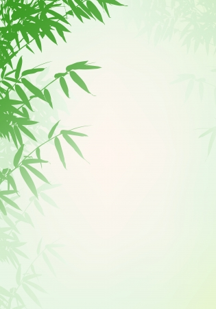 asian culture: Bamboo tree background  Illustration