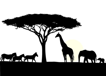 Africa silhouette background  Ilustrace
