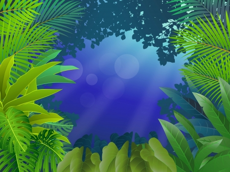 illustration of Tropical forest background Stock Vector - 14325367