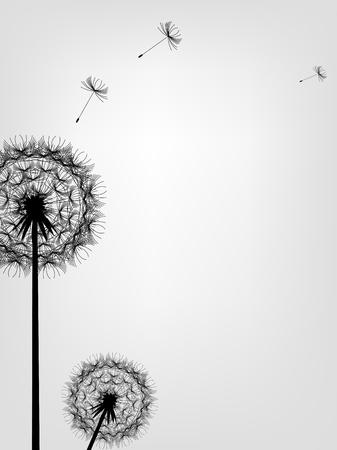 blowing dandelion: illustrazione di sfondo Dandelion Vettoriali