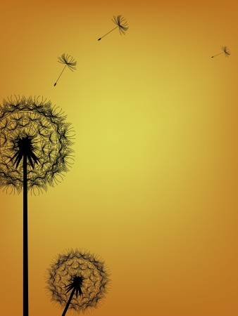 blowing wind: illustration of Dandelion background