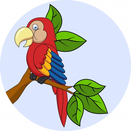 vector iollustration of Macaw cartoon