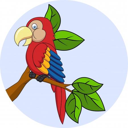 cartoon parrot: vector iollustration of Macaw cartoon
