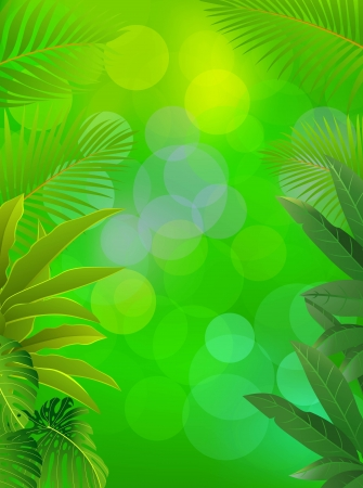 illustration of tropical forest background  Vector