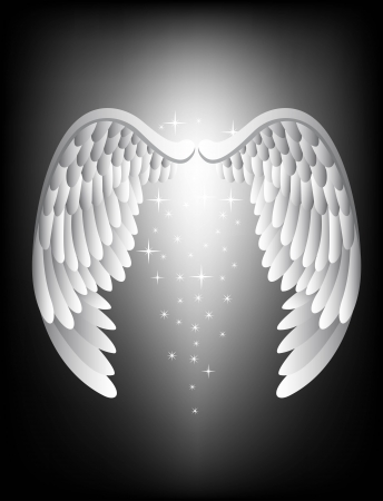 heavenly: vector illustration of Angel wing