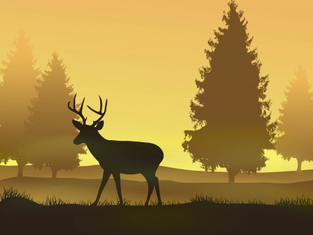 pine tree silhouette: vector illustration of Deer with nature background