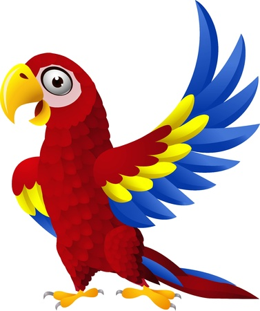 macaw: illustration of Detailed funny macaw bird cartoon
