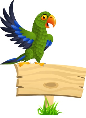 macaw: illustration of Green parrot with blank signboard  Illustration