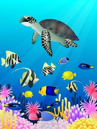 illustration of Sea life background Illustration