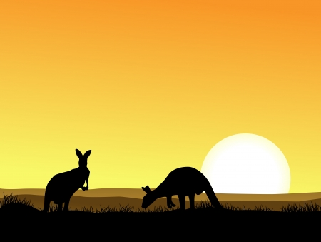 illustratio of Kangaroo silhouette  Stock Vector - 14324557