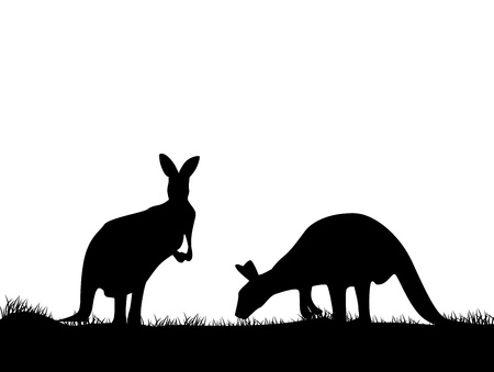 illustratio of Kangaroo silhouette  Vector