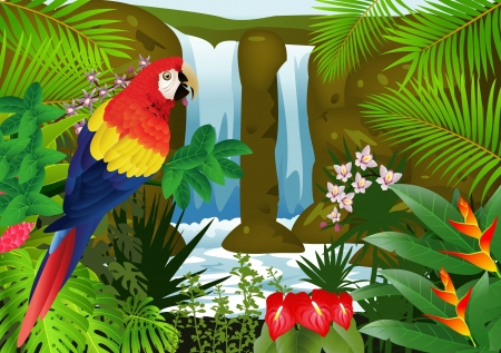 illustration of Macaw bird with waterfall background
