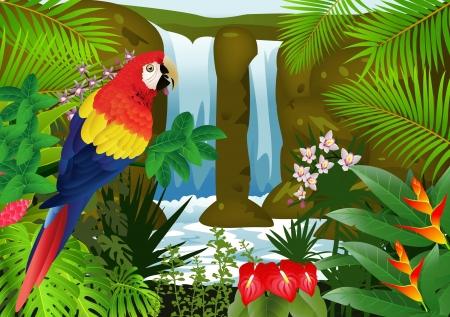 loros verdes: ilustraci�n de aves Macaw con el fondo de la cascada