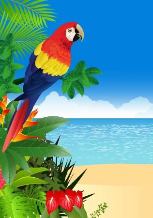 guacamaya: illustratio de Guacamayo con fondo de playa tropical
