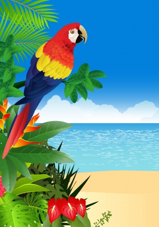 macaw: illustratio of Macaw with tropical beach background Illustration