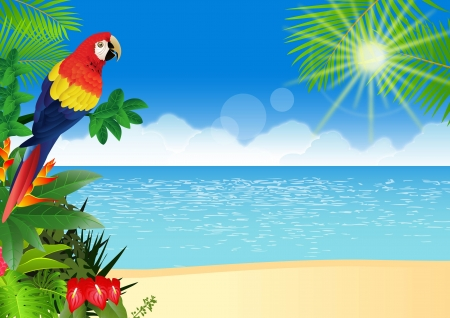 illustration of Macaw with tropical beach background