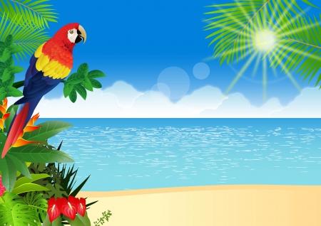 loro: ilustración de Guacamayo con fondo de playa tropical