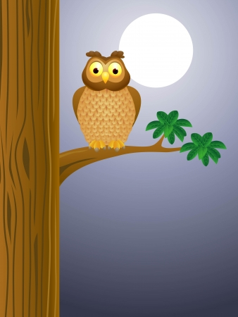 illustratio of Owl cartoon with moon background  Vector
