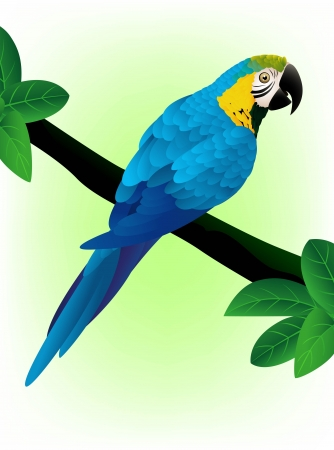 green parrot: illustratio of Blue macaw