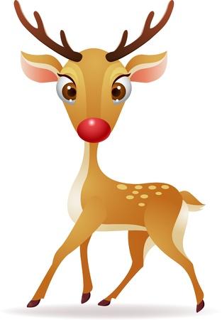 white tail deer: illustration of Red nose deer  Illustration