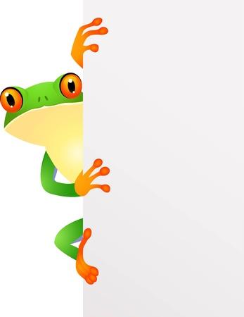 salamandra: ilustración de la rana con cantar en blanco