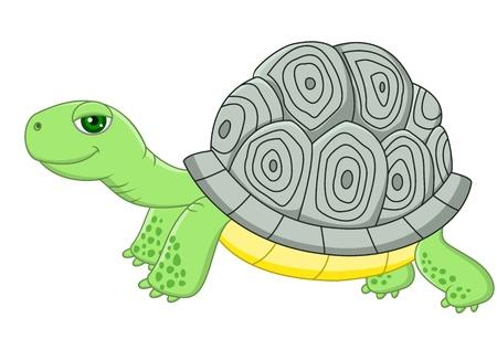 zoology: illustration of Tortoise cartoon Illustration