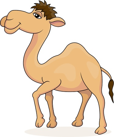 illustration of Camel cartoon Vector