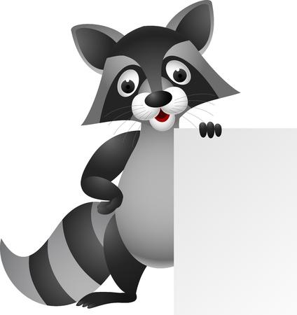 raton laveur: illustration de bande dessin�e Raccoon avec signe blanc