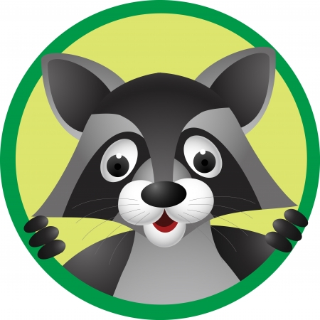illustration of Raccoon cartoon