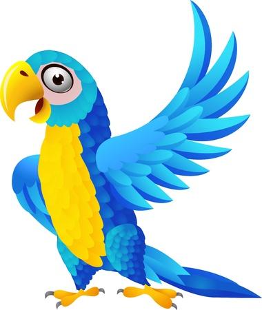 cartoon parrot: illustration of macaw birg