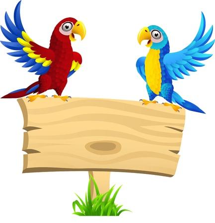 guacamaya caricatura: ilustración de aves Macaw, con letrero en blanco