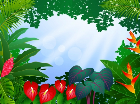 rain forest background: illustration of tropical forest background Illustration