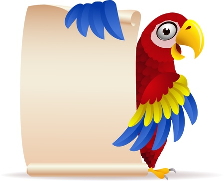 cartoon parrot: illustration of Macaw bird with scroll paper  Illustration
