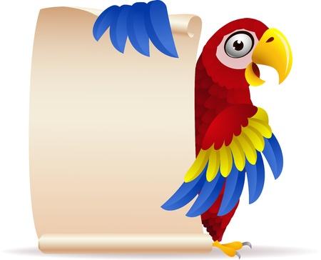 pappagallo: illustrazione di uccello Macaw con carta di scorrimento
