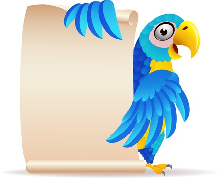 blue parrot: illustration of Macaw bird with scroll paper  Illustration